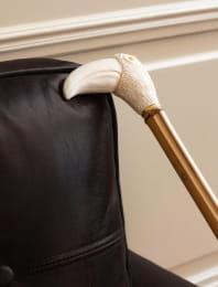 Luxury shoe horn